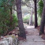 Der Weg in die Cala Moro